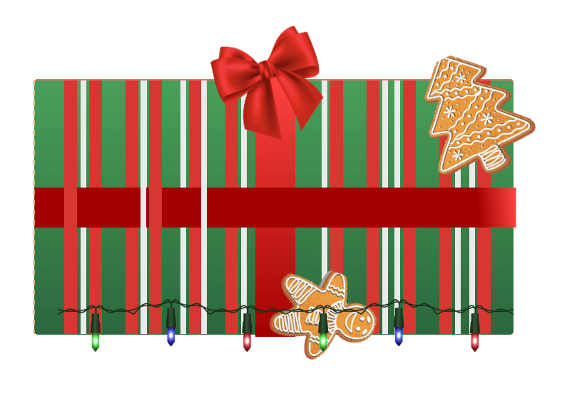 Holiday gift with ribbon, Christmas lights and gingerbread cookies on it